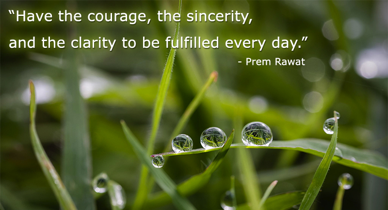 dew,leaf,macro,Prem Rawat,quote