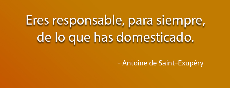 Antoine de Saint-Exupéry,quote