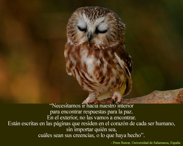 Prem Rawat, Universdad de Salamanca, España,quote