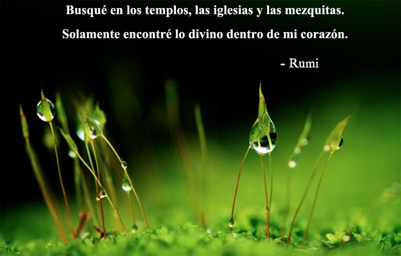 Rumi,quote
