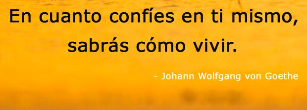 Johann Wolfgang von Goethe,quote