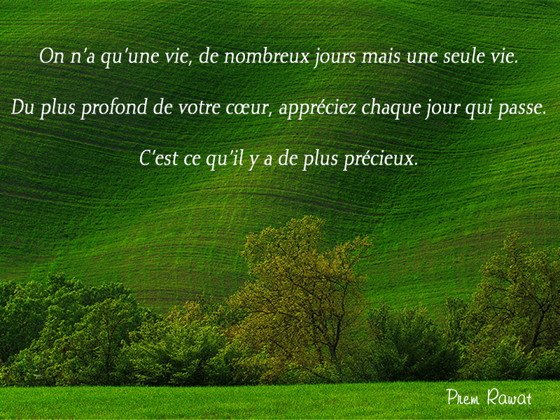 green, trees,Prem Rawat,quote