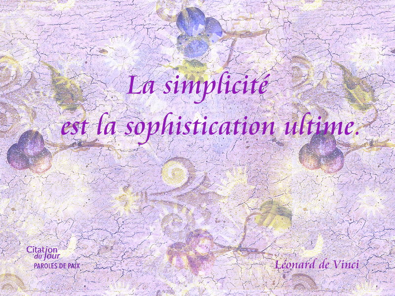 ,Leonard de Vinci,quote