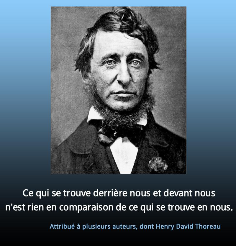 Attribué à plusieurs auteurs, dont Henry David Thoreau,quote
