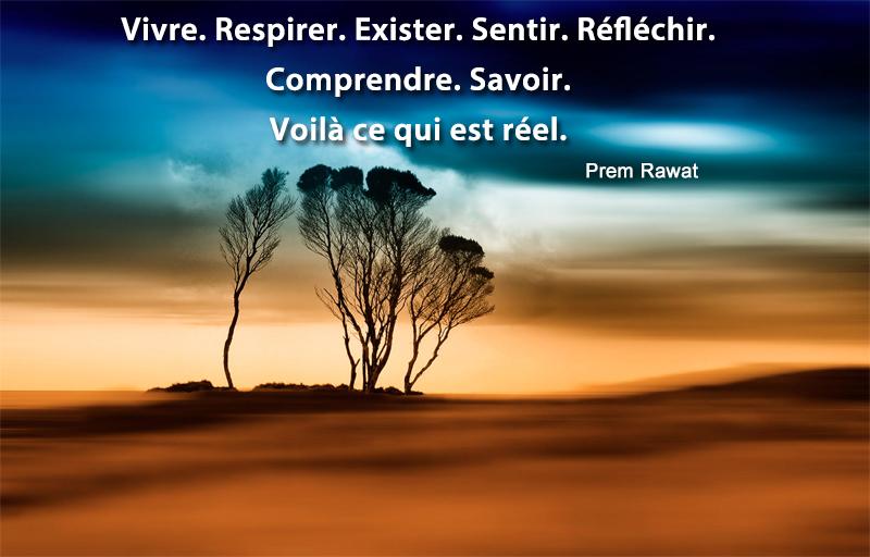 désert, arbres, bleu profond,Prem Rawat,quote