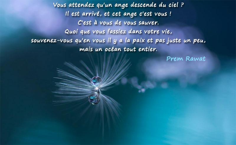goutte d'eau, mouvement,Prem Rawat,quote
