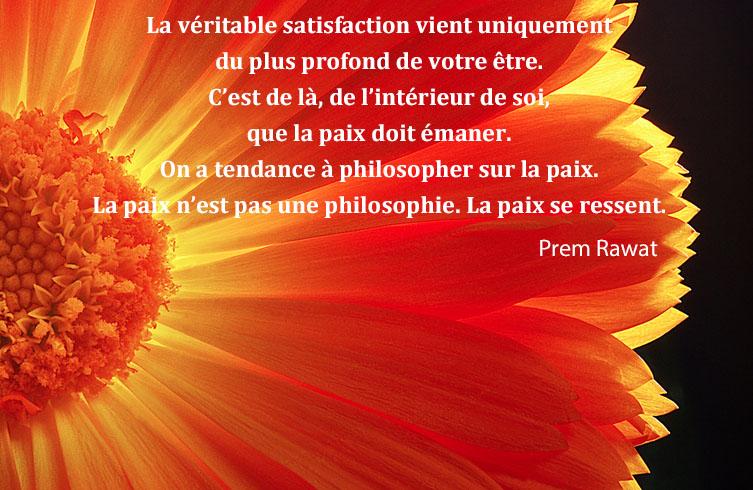 pétales,fleur, jaune,Prem Rawat,quote