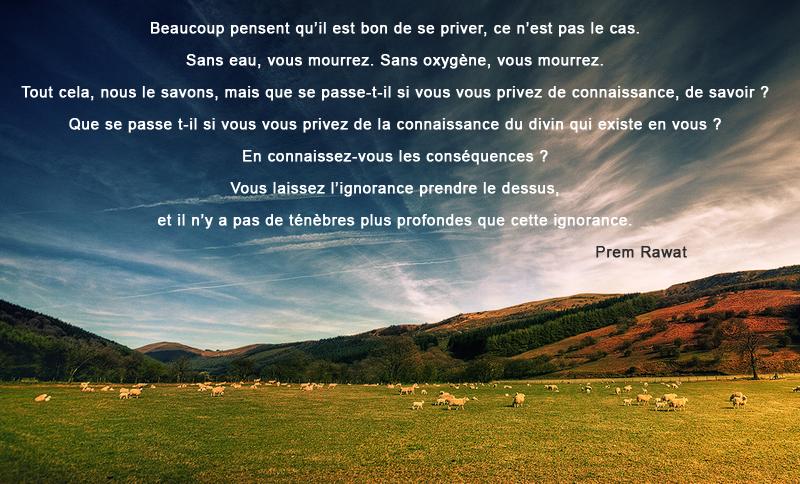 prairie, vaches, ciel,Prem Rawat,quote