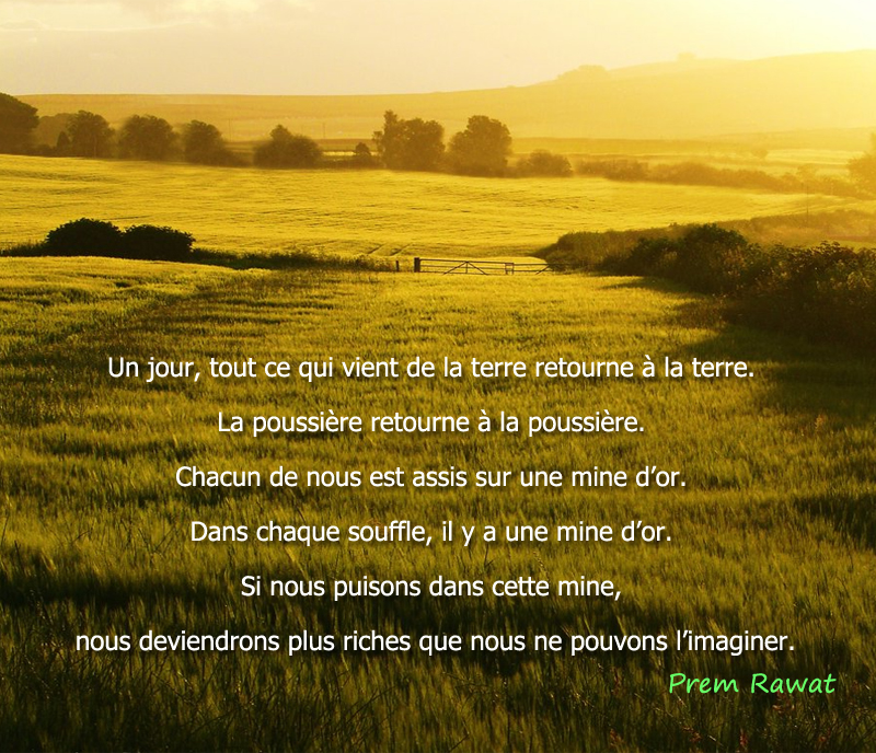 champ de blé,Prem Rawat,quote