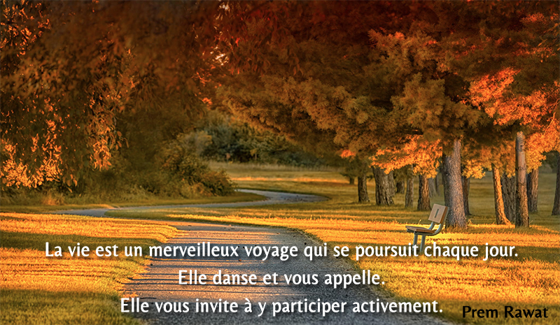 trees, autumn,Prem Rawat,quote