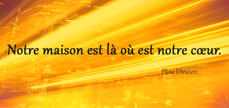 Pline l'Ancien,quote