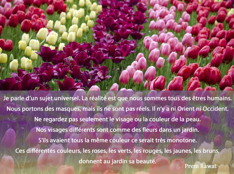 flowers,Prem Rawat,quote