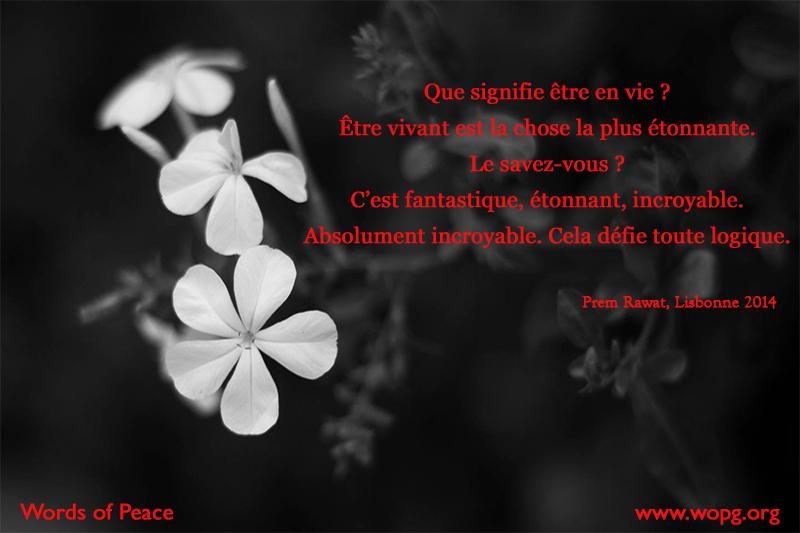 fleurs blanches,Prem Rawat,quote
