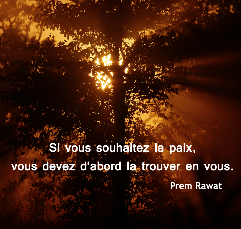 sun, tree,Prem Rawat,quote
