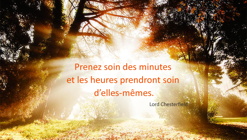 sous bois lumineux,Lord Chesterfield,quote
