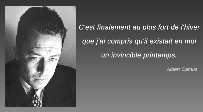 Albert Camus,Albert Camus,quote