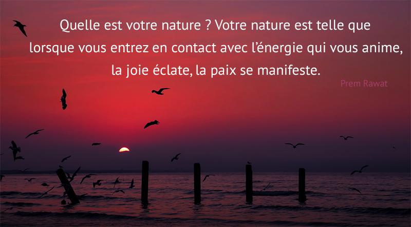 sunset, lake, birds,Prem Rawat,quote