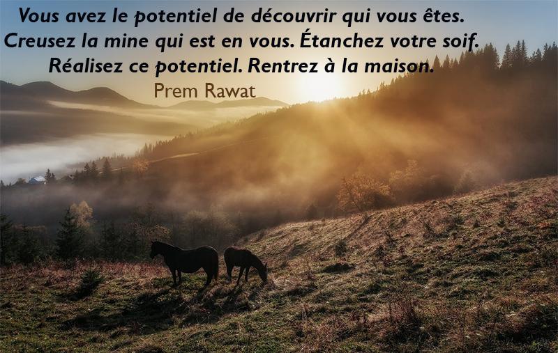 mountain, fog, horses,Prem Rawat,quote