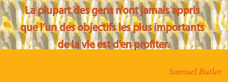 yellow,Samuel Butler,quote