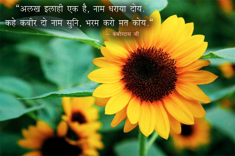 Alakh Elaahi, Sunflower, Kabir,कबीरदास जी,quote