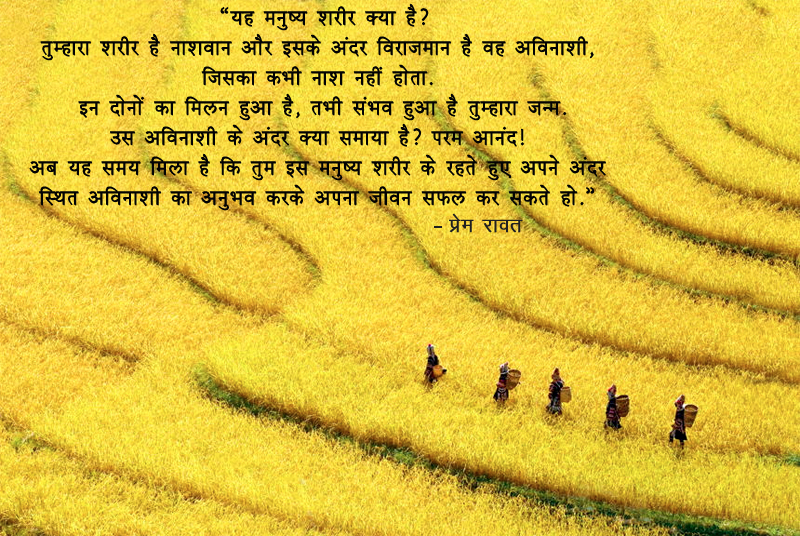 Yellow Field, Manushya Shareer, Avinashi, Nashwaan,प्रेम रावत,quote