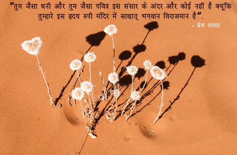 Flowers, Shadows,Dhani, Pavitra, Sakshaat, Bhagwan,प्रेम रावत,quote