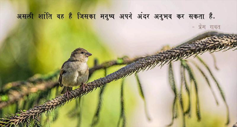 bird, tree,प्रेम रावत,quote